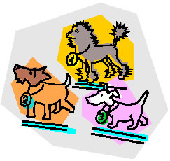 graphic illustration of show dogs with top three winners